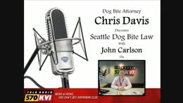 TALK RADIO: Seattle Dog Bite Law Following Pit Bull Mauling